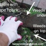 landscape fabric - weed barrier