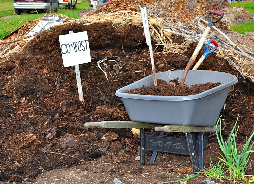Too Much Compost - Is It Poisoning Your Garden