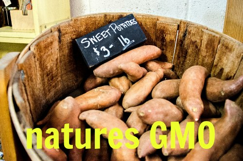 All natural GMO produced by nature - it is good for you!