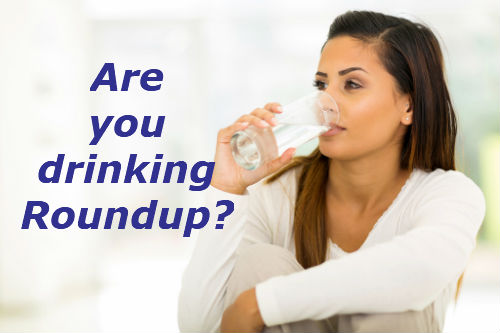 Unnatural fear of Roundup in drinking water - Understanding small numbers